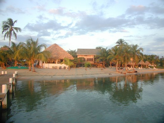 Green Parrot Beach Houses: Green Parrot Resort Beach and Restaurant