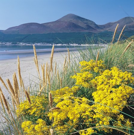 Murlough National Nature Reserve