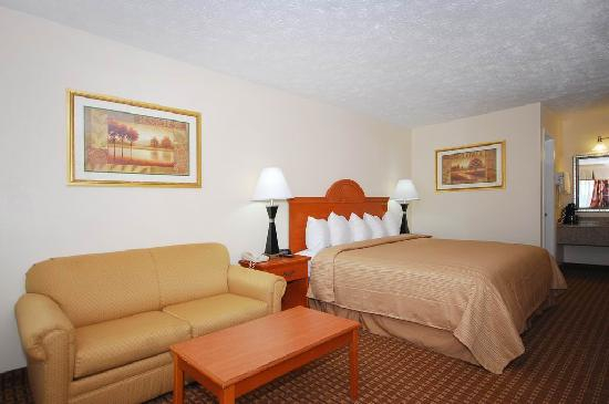 Quality Inn Dahlonega: Guest room with 1 king bed