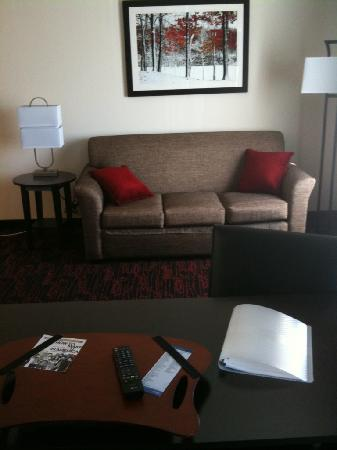 Hampton Inn and Suites Tulsa Hills: Pull out sofa
