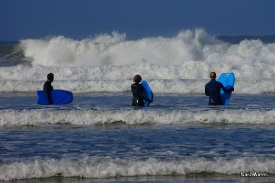 Surfers On Indian Beach Picture Of Cannon Beach Surf
