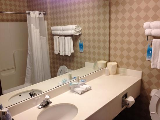Holiday Inn Express Acme-Traverse City: 3