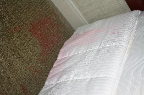 Vomit stain on floor/bed skirt/mattress. Stained sheets and comforter. GROSS - The Westin ...