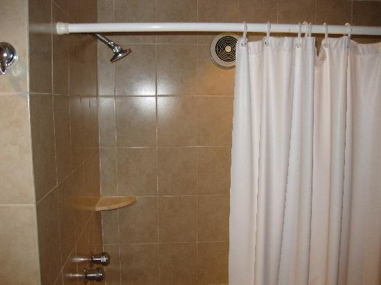Hotel Roma, Suites & Business Center: Shower