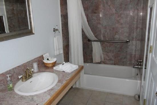Sierra Mountain Inn: Marble Bath