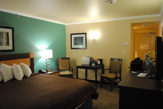 BEST WESTERN PLUS Chena River Lodge: Bed room picture 2