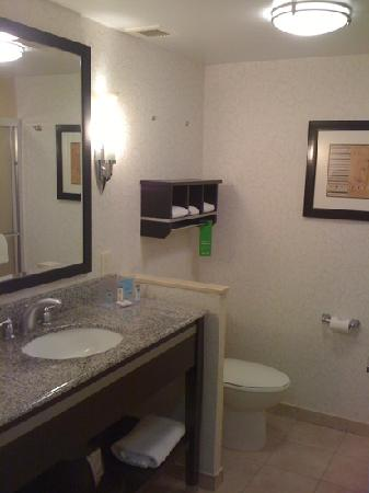 Hampton Inn Jericho Westbury: bathroom