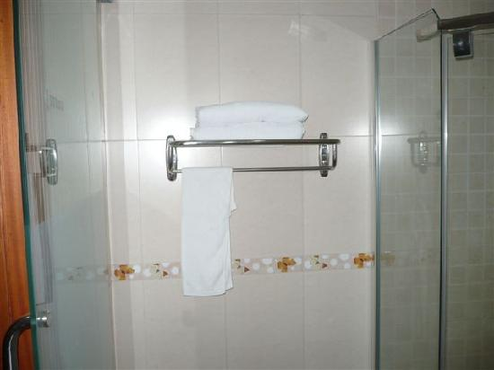 Silver Palm Hotel: Shower (Nice and HOT !!!)