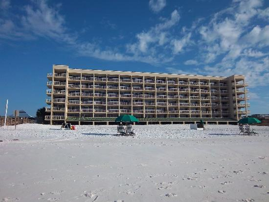 Four Points by Sheraton Destin- Ft Walton Beach : This is the view from the beach.