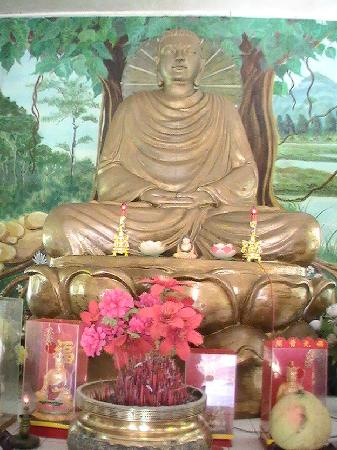puerto galera buddhist personals For singles you probably want to know a place for singles to mingle this love month puerto galera boasts a 15 km stretch of coastline  puerto galera can be.