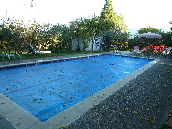 Bear Flag Inn: pool area