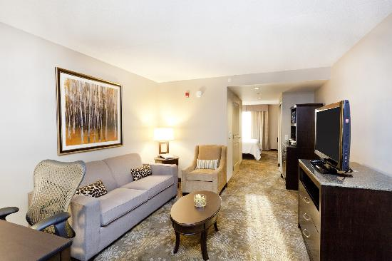 King Evolution Suite Picture Of Hilton Garden Inn Toronto Brampton Brampton Tripadvisor