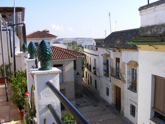 Santa Ana Hostal : We loved the rooftop patio, a feature of life in Cordoba.