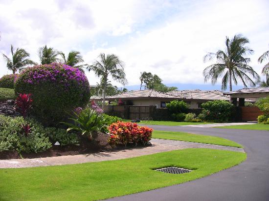 Kolea at Waikoloa Beach Resort: Grounds are gorgeous - colour everywhere