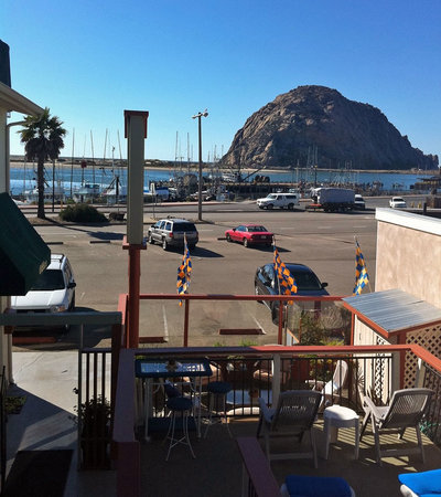 Morro Bay Dog Friendly Things To Do