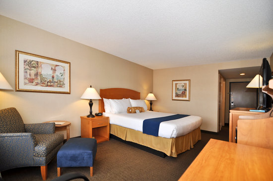 BEST WESTERN PLUS Anaheim Orange County Hotel: BWP Placentia King Bed Standard Room