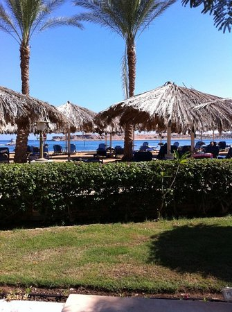 Iberotel Palace: right on a natural Sham beach