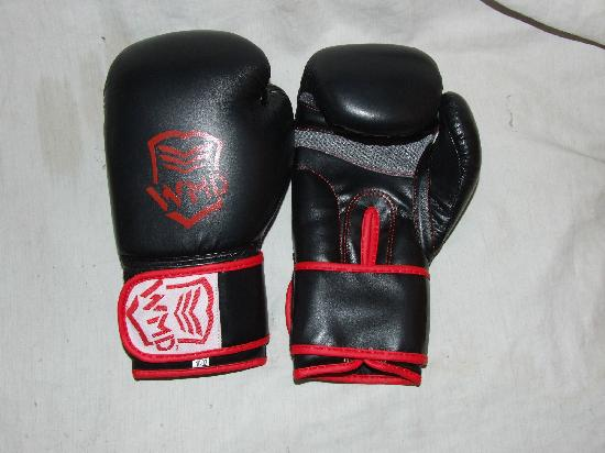 Pakistan: Boxing Gloves