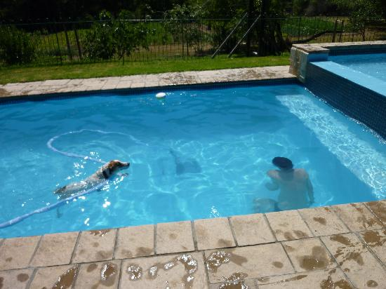 Rainbow Glen Self-Catering Guest Cottages: im Pool