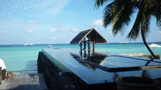 piscine d bordement sur la plage picture of one only reethi rah reethirah island tripadvisor. Black Bedroom Furniture Sets. Home Design Ideas
