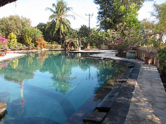 Villa Unggul: The pool