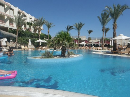Lola Ideal Swimming Pool Very Shallow Picture Of Hilton Sharks Bay Resort Sharm El Sheikh