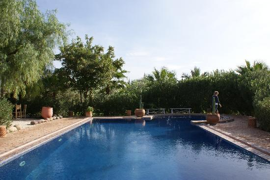 Villa Vanille: Pool view