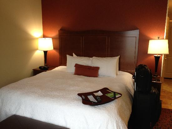 Hampton Inn Tomah: King Bed