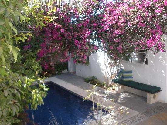 Los Milagros Hotel: Los Milagros Courtyard