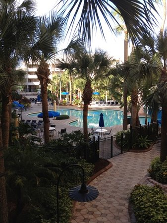 Embassy Suites Orlando/Lake Buena Vista Resort: pool