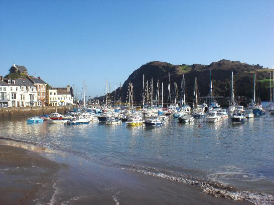 Bay Dilkhusa Grand Hotel: Ilfracombe harbour