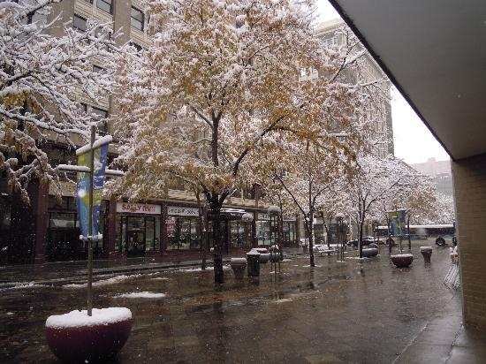 16th street mall after snow picture of denver colorado. Black Bedroom Furniture Sets. Home Design Ideas