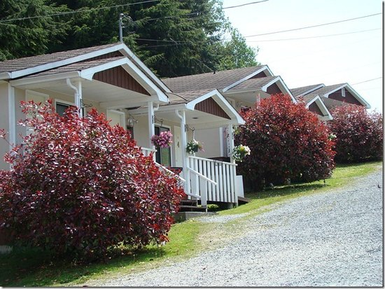 Oceanview Cabins
