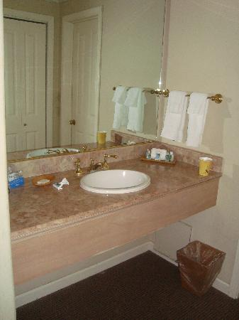 Carmel Lodge: Access to bathroom - separate sink