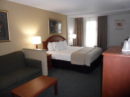 Comfort Inn & Suites Winter Park Village Area: King Room