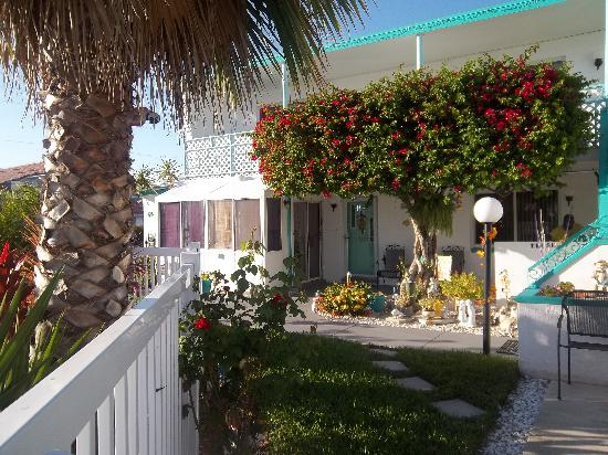 Photo of Cavalier Resort Motel Clearwater