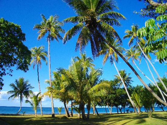 Hienghene, New Caledonia: View from the patio of the bungalow.