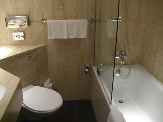 Hotel Ascot: The bathroom