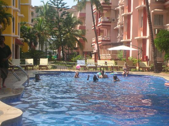 Adamo The Bellus Goa: The cool pool- nicest area!