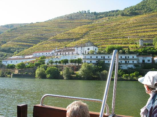 Hotel Douro: A Quinta (wine farm)