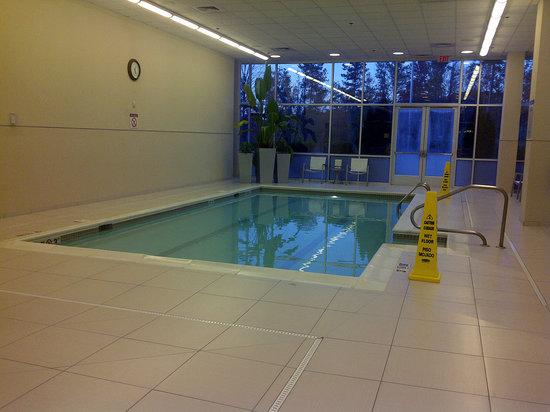 The Westin Richmond: Indoor pool, not quite long enough for laps