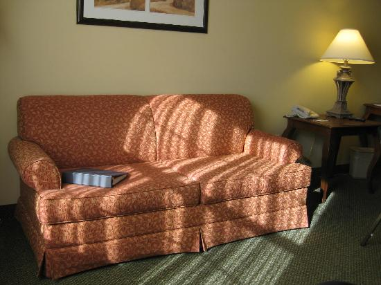 Country Inn & Suites Tinley Park: Cozy comfort, for work or play.
