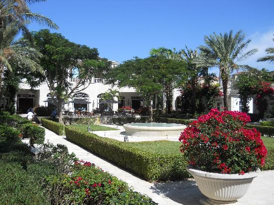 The Regent Palms: The Courtyard