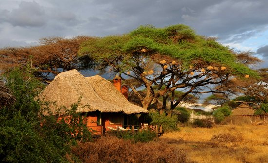 Tawi Lodge: Individual Lodges