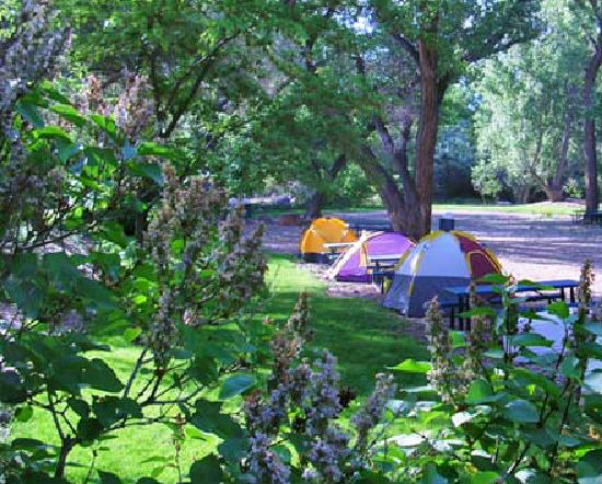 Up the Creek Campground: Tent camping in Moab