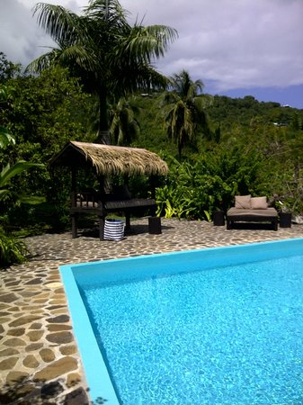 Firefly Plantation Hotel Bequia: Pool