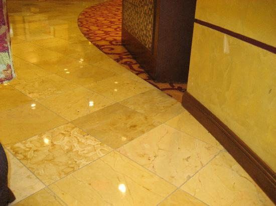 Embassy Suites by Hilton Dallas Frisco Hotel Convention Center & Spa: Dead beetles in hotel reception