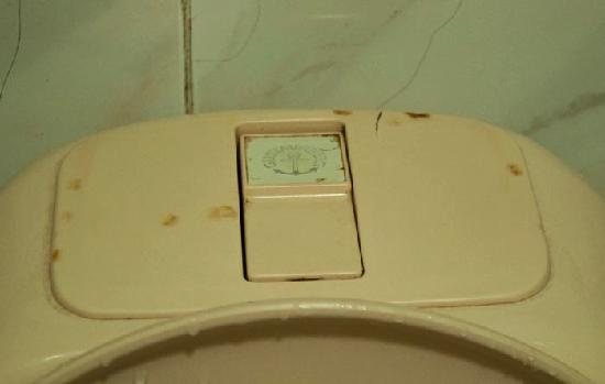 Hotel 81 - Orchid: the stains on the toilet cover