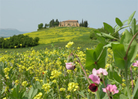 Agriturismo Bonello