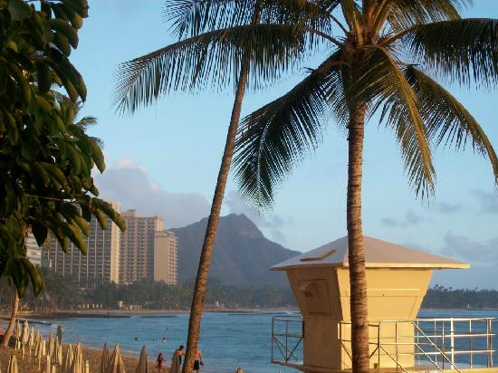 http://media-cdn.tripadvisor.com/media/photo-s/02/31/6d/72/i-love-hawaii.jpg